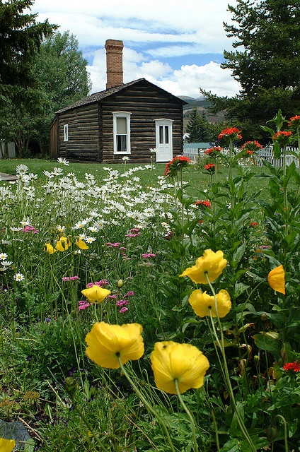 17 Best Images About Leadville Colorado The Beginning