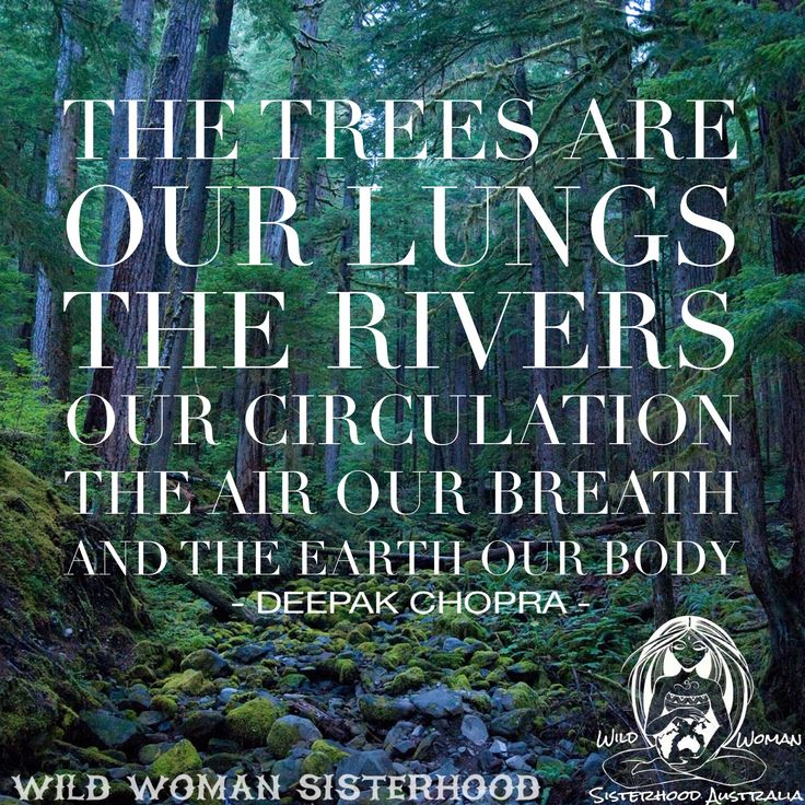 """""""The trees are our lungs, the rivers our circulation, the air our breath, and the earth our body."""" – Deepak Chopra #inspiration"""