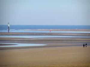 Cabourg - Côte Fleurie : plage de sable de la station balnéaire avec des promeneurs et des oiseaux marins, à marée basse, et mer (la Manche)