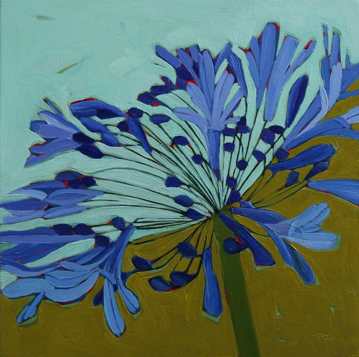 Olive Stack Gallery (@olive_stack)   Twitter #agapanthus