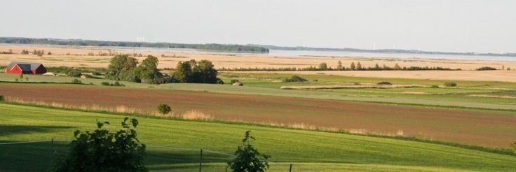 View from Omberg, Östergötland, Sweden