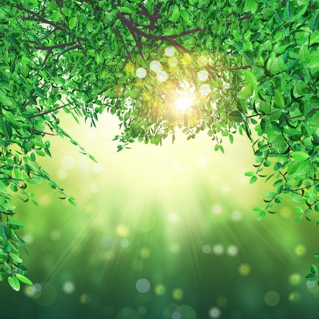 3d render of leaves on bokeh lights background Free Photo