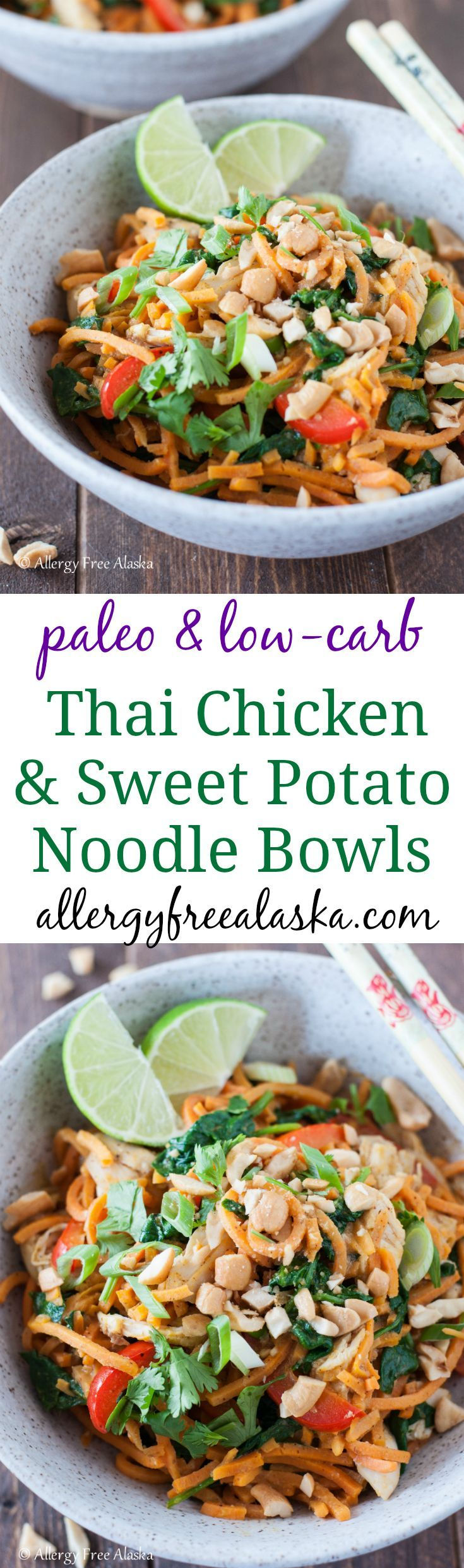 "These Thai Chicken & Sweet Potato Noodles Bowls are a delicious way to give into your Thai craving while staying low-carb. Spiralized sweet potato ""noodles"" take the place of rice noodles, and are covered in a spicy satay-like sauce. Add in some fresh veggies and tender chicken, and you have a perfect meal for any night of the week! {gluten-free, Paleo, soy-free & can be made vegan with 2 tweaks!}"