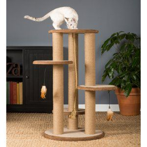 Cat Trees on Hayneedle - Cat Trees For Sale - Page 2