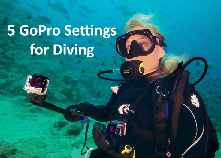 In this post, you'll learn 5 GoPro settings for diving. I love to snorkel - and have had a blast filming animals with a GoPro. In the video, Mark will cover the following: