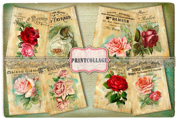 Roses  Digital Collage Sheet Printable Vintage by PrintCollage