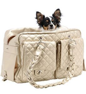 Puppy Carriers- Carriers For Dogs, Small Pet Carriers, designer Couture, Kwigy Bo Carriers