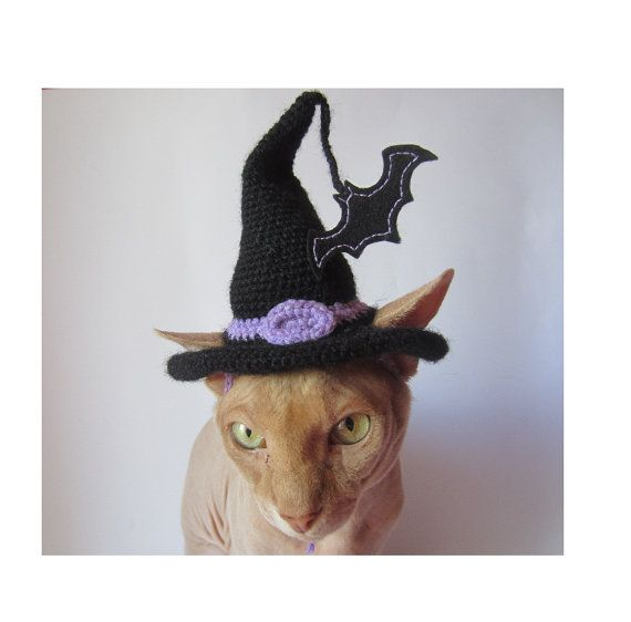 CAT hat gato del sombrero del ganchillo sombrero animal