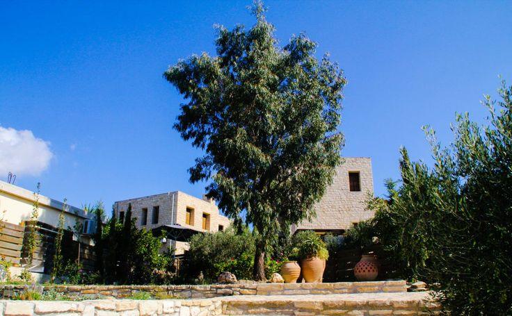 Ich habe sie gefunden: die ideale Ferienvilla mit Pool mitten auf Kreta - ein Urlaubsparadies für Ruhesuchende mit hohem Entspannungsfaktor.
