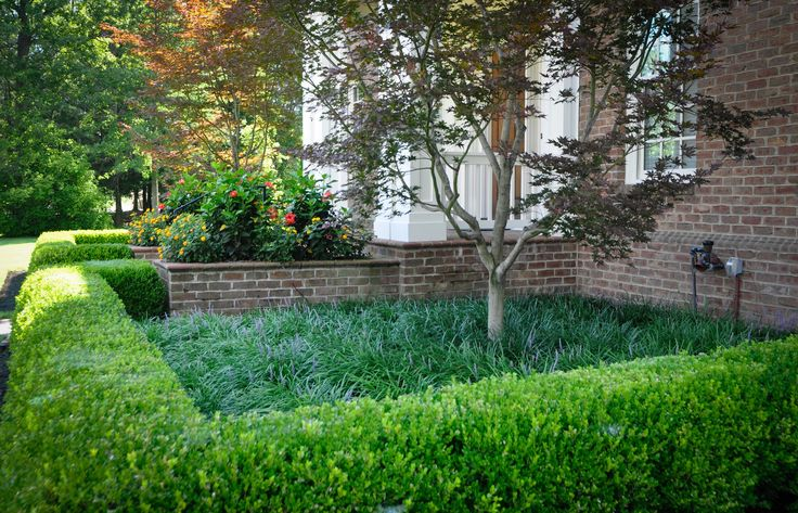 17 best images about jardin on pinterest gardens hedges for Beautiful gardens and maintenance