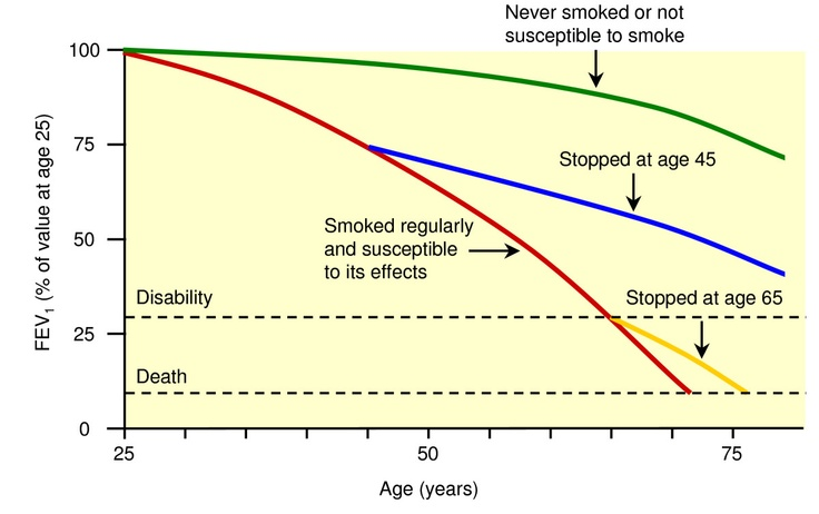 Ook het stoppen met roken na de 50 kan nog zeer veel gezondheids winst opleveren maar vooral klachten voorkomen. www.prostop.nl