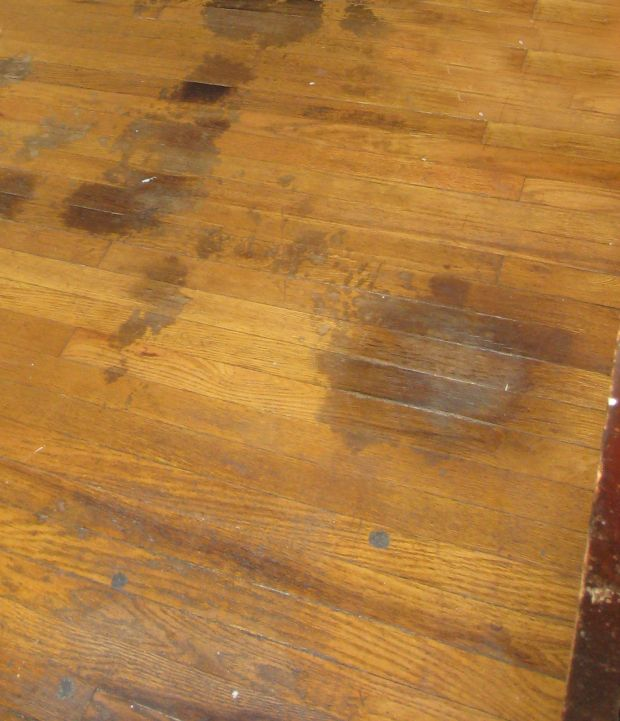 Best 25 Wood Stain Color Chart Ideas On Pinterest Stain