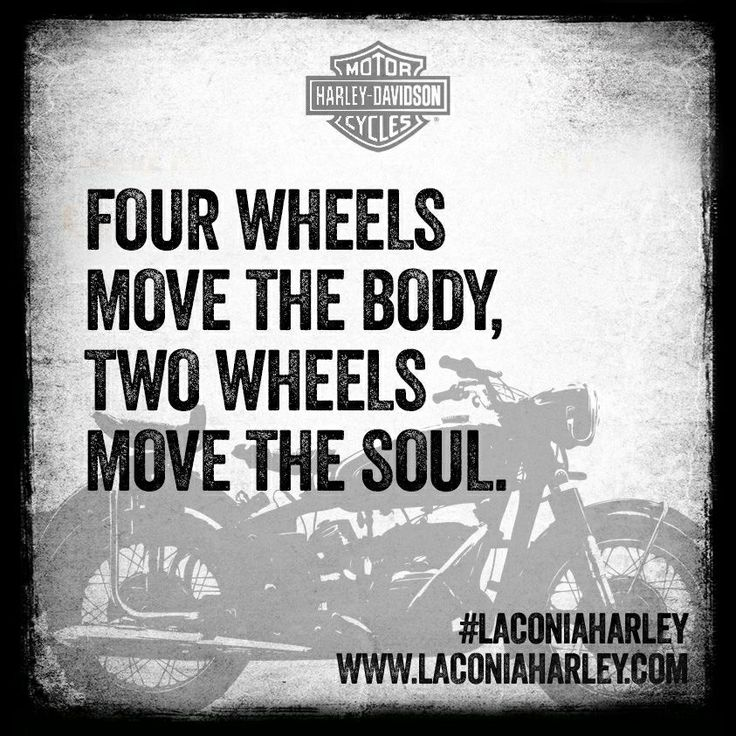 Tattoo Quotes You Only Live Once But If Done Right: Quote Of The Day: Four Wheels Move The Body, Two Wheels