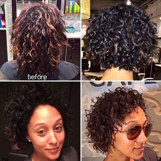 Tamera Mowry-Housley BIG CHOPPED! We got some amazing naturally curly hair cut tips from her stylist Shai Amiel. Read on!