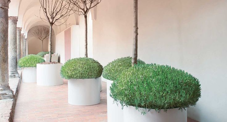 PLanters and topiary by - Paola Lenti #planters #topiary #designerpots