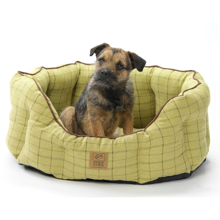Green Tween Oval Dog Bed by House of Paws, £24.99 - £59.99. #dogbed #greentweed #cosydogbed #dogs