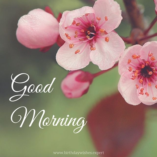 Good Morning image with flowers