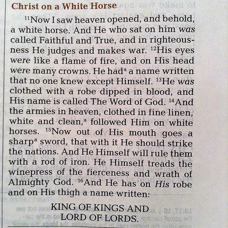 Revelation 19:11-16  #Christian #humanity #people #men #women #Bible #university #study #studying #teaching #learning #school #education #books #words #friendship #relationship #Scripture #youth #young #teenagers #adult #collegelife #white #horse #ride #war #win #victory #power