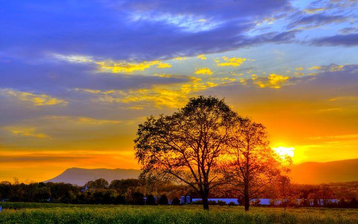 Summer Sunset Wallpaper-2