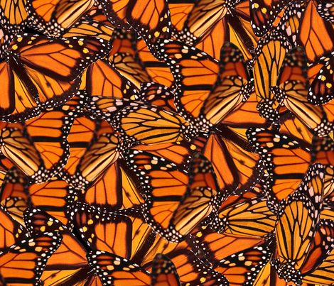 Monarch Erfly Fabric By Jenfur On Spoonflower Custom Cosplay Pinterest And