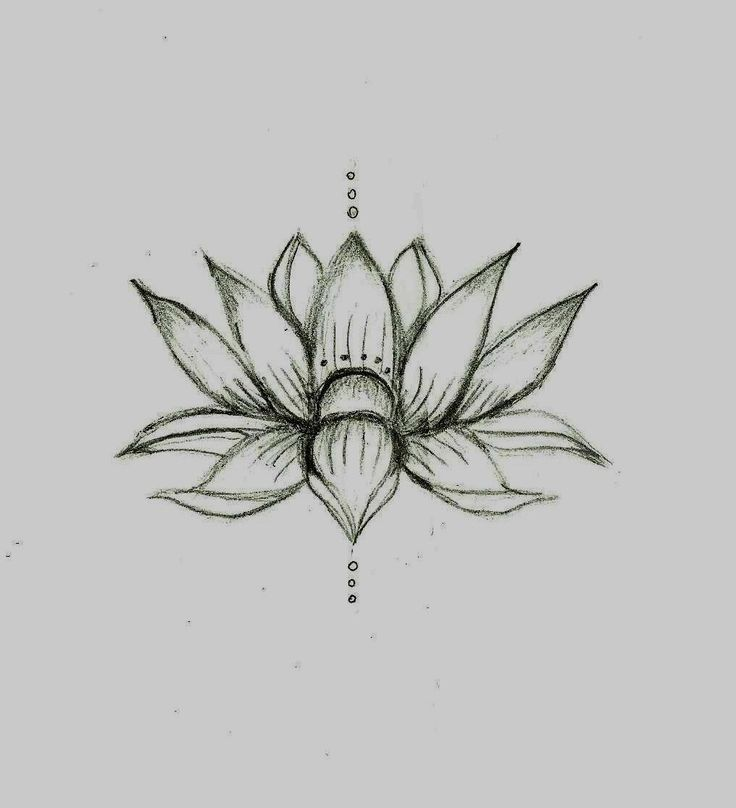 best 25 lotus tattoo foot ideas on pinterest tatoo placement henna art designs and hena tattoo. Black Bedroom Furniture Sets. Home Design Ideas