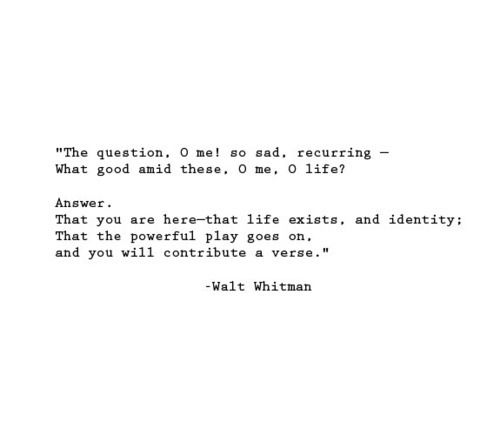 I hope my verse is beautiful. Love Walt Whitman