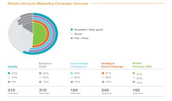 Výzkum: mobilny marketing Marketing journal