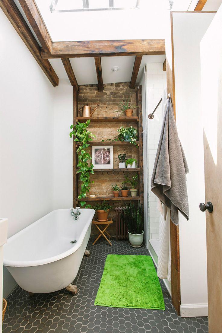 Plantinhas para o banheiro: jiboia (essa caindo) e babosa (no vaso do chão).