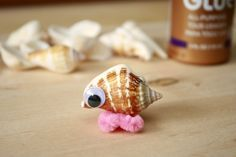 OMG! After school program brilliance! We watch Marcel the Shell (my fave), make our own Marcels, then we practice close-ups by taking photos of the lil' guys all over the place!
