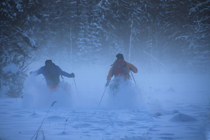 An afternoon winter fun with 30 metres Snow shoe racing.