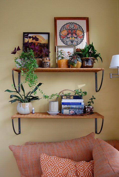 plants and artHouse Plants, Living Rooms, Lauren Naimola, Decor Ideas, Animal Ideas, House Ideas, Design Ideas, Shelves, Boho Bedrooms