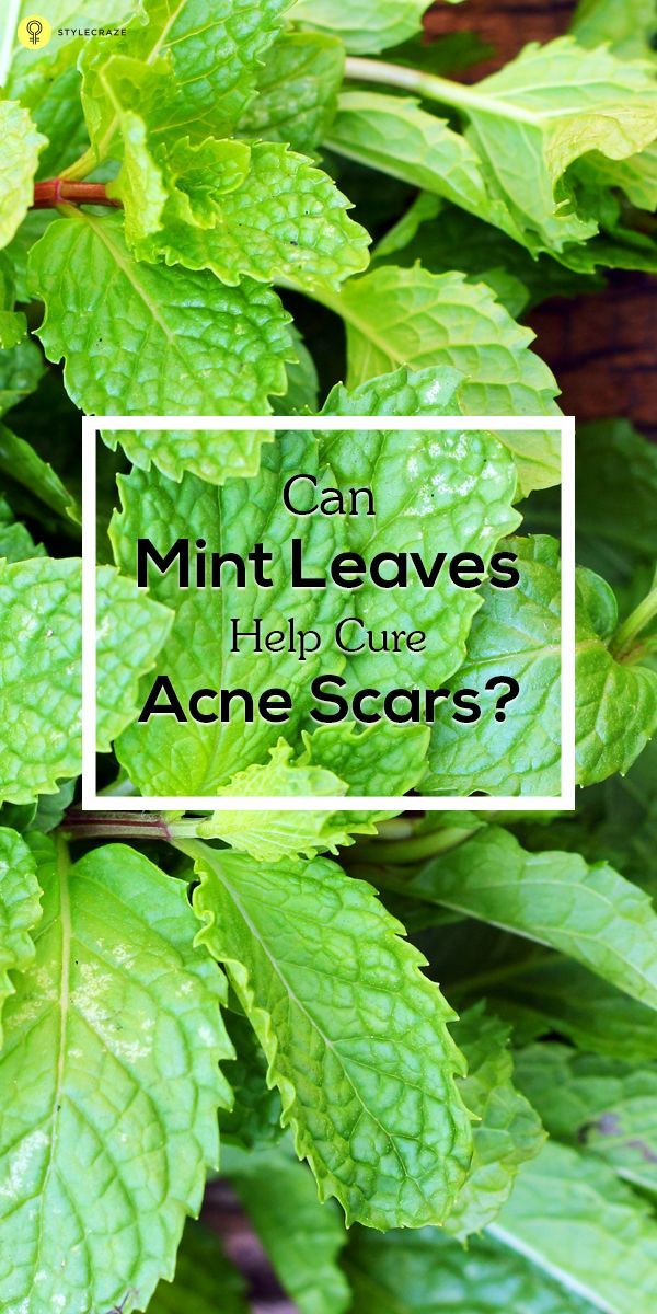 Skin Care Tips For Acne : Believe it or not mint is an excellent herb that cures infections such as #acne
