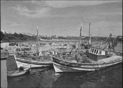 barcos de pesca em Sines