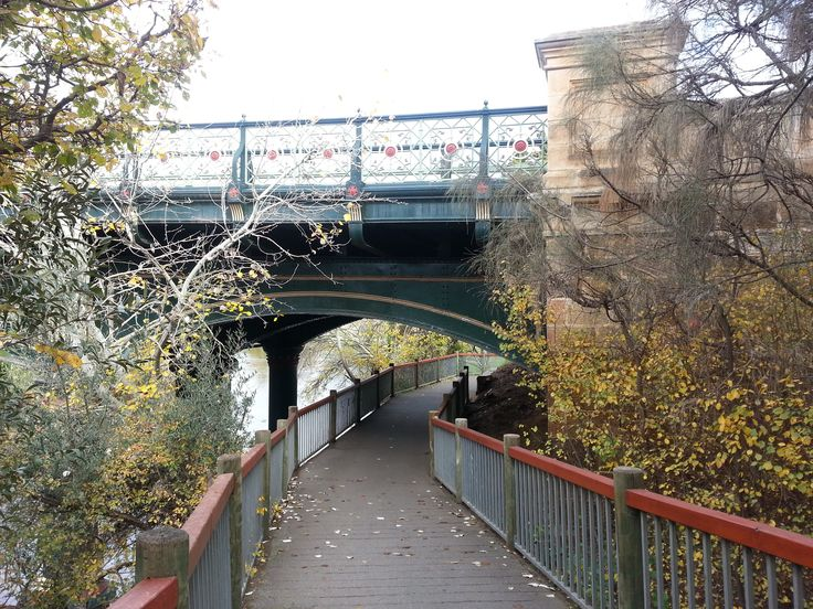 A few autumn leaves still hanging on...bridge on the Torrens