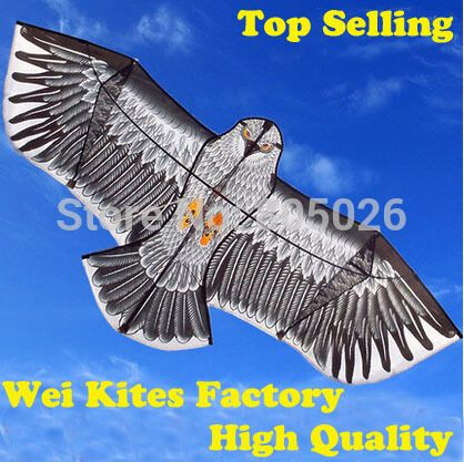 100m handle Line Outdoor Fun Sports 1.6m Eagle Kite