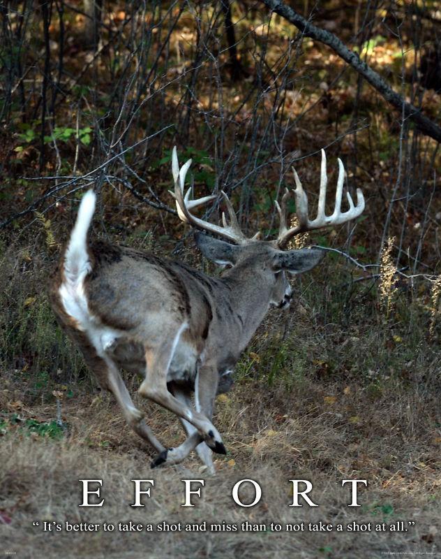 Shooting deer in the ass