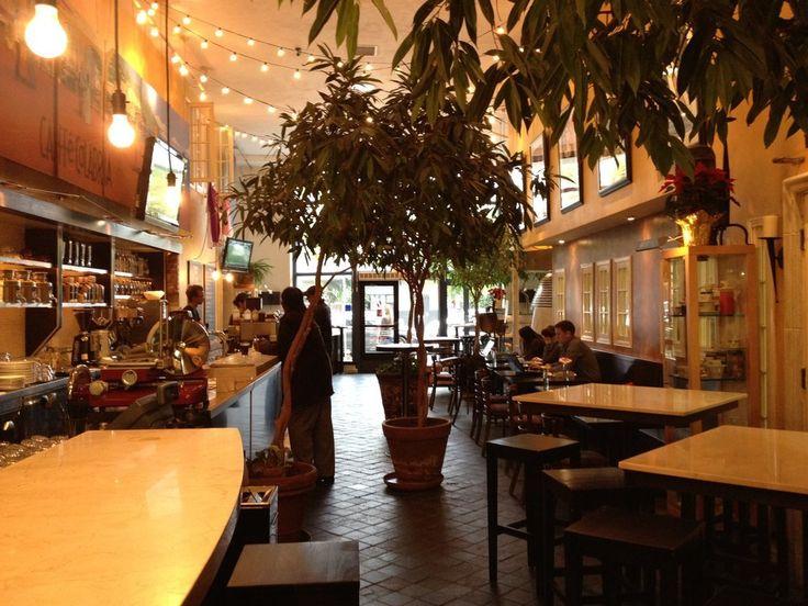 Best Coffee Shops To Study In La Jolla