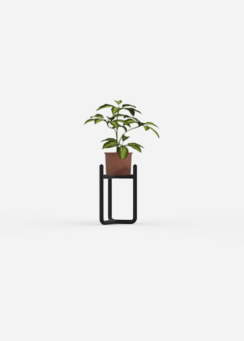 Minimal Plant Stand made with Aalo