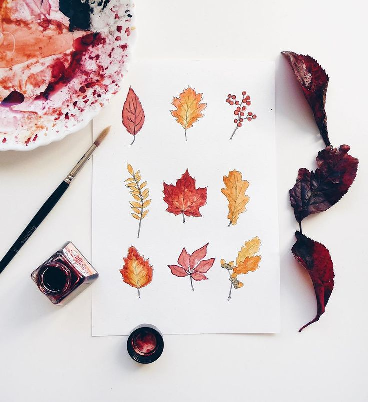 October Day 25 • took a closer look at all the leaves I've been painting this month  to date! ✌