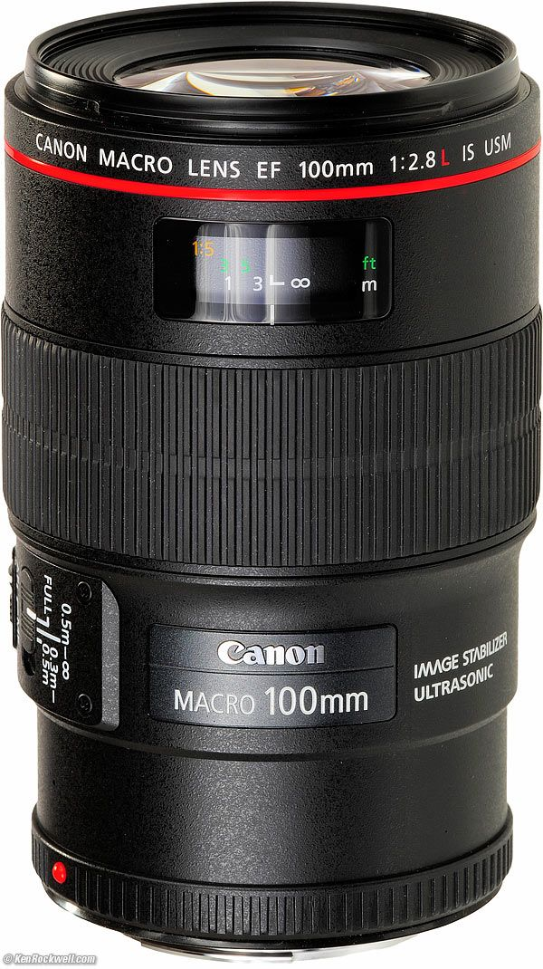 Canon 100mm f/2.8 IS Macro EF L IS USM (2009-today) I bought this one in December 2015