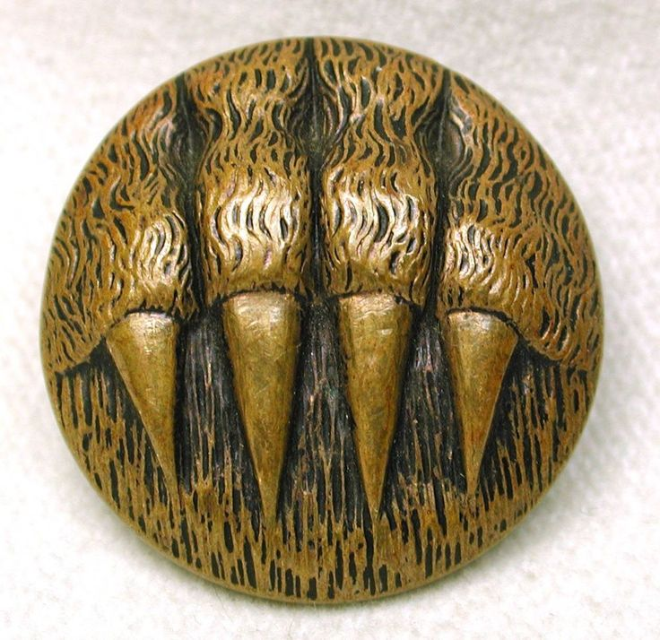 Antique Brass Picture Button Bear Paw w/ Claws Extended 15/16""