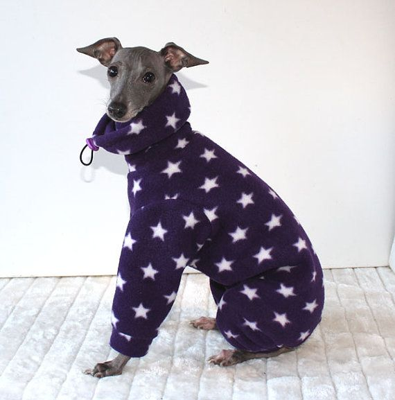 Cream Snood Jammies for Italian Greyhounds other by Shadedmoon
