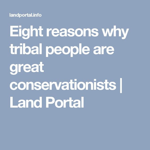 Eight reasons why tribal people are great conservationists   Land Portal