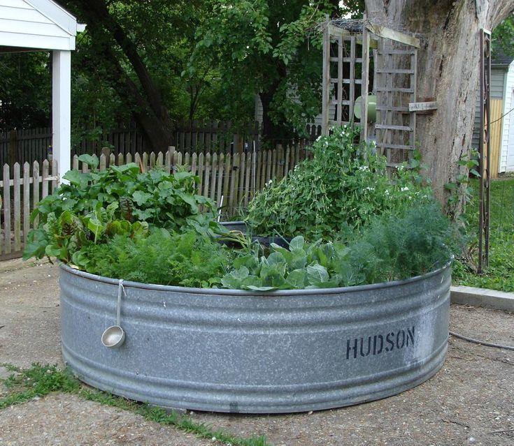 79 Best Garden Images On Pinterest
