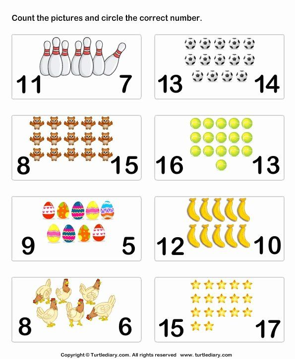 Counting To 20 Worksheet Awesome Count Pictures Turtlediary Math Counting Activities Math Activities Preschool Math Counting Worksheets Preschool matching numbers 20