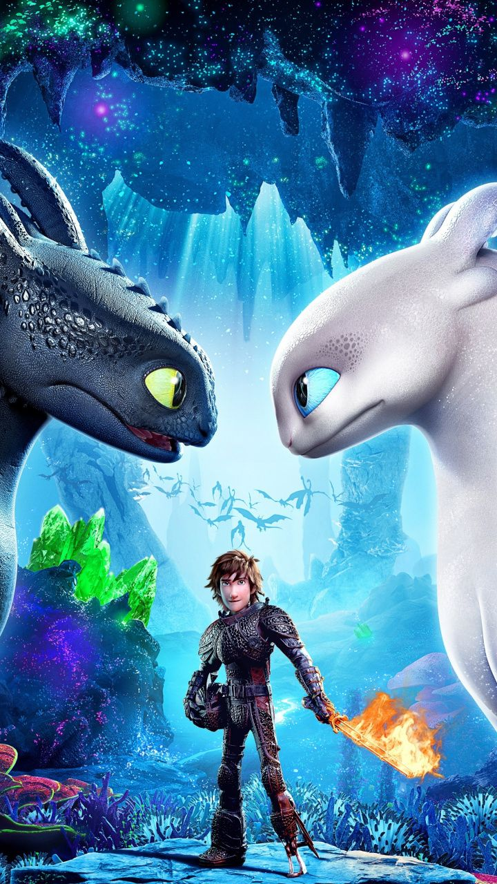 Download 720x1280 Wallpaper How To Train Your Dragon The Hidden