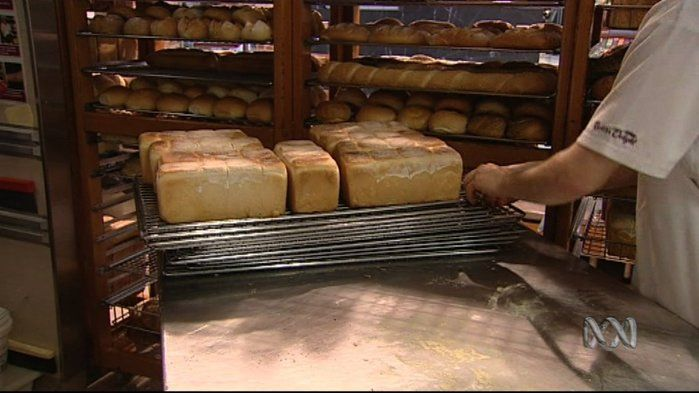 Australians love bread.. but how do you make it? - Science (2,4)