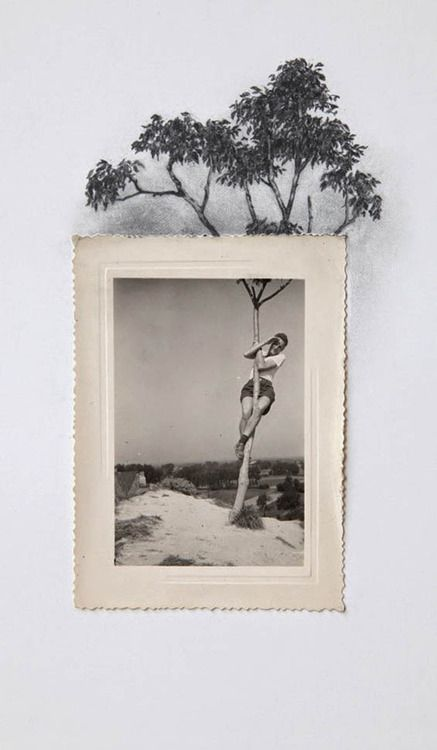 Drawing from photographs, Lauren King