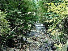 Bode Fluss in Deutschland Die Bode ist ein 169 km langer, westlicher und linker Zufluss der Saale in Sachsen-Anhalt. Sie entspringt mit zwei Quellflüssen im Harz, fließt im Landkreis Harz, Landkreis Börde, Salzlandkreis und mündet bei Nienburg. Wikipedia Länge: 140 km Mund: Saale Quelle: Harz Land: Deutschland