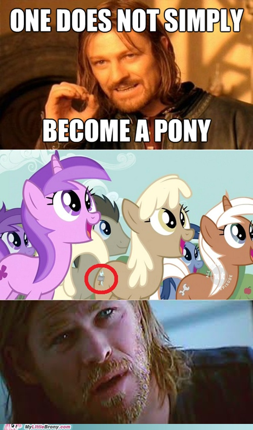 21 best images about my little pony funny on Pinterest ...